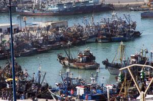 Agadir, premier port du Maroc
