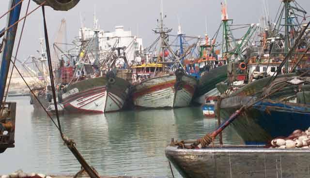 La pêche côtière et artisanale au Maroc : Progression de 21% des débarquements