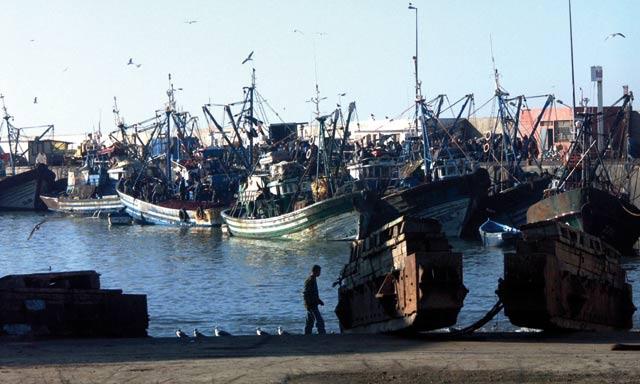 La pêche maritime veut se doter  des armes juridiques