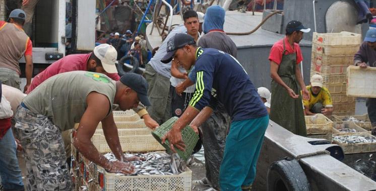 Hausse de 7% des débarquements de la pêche côtière