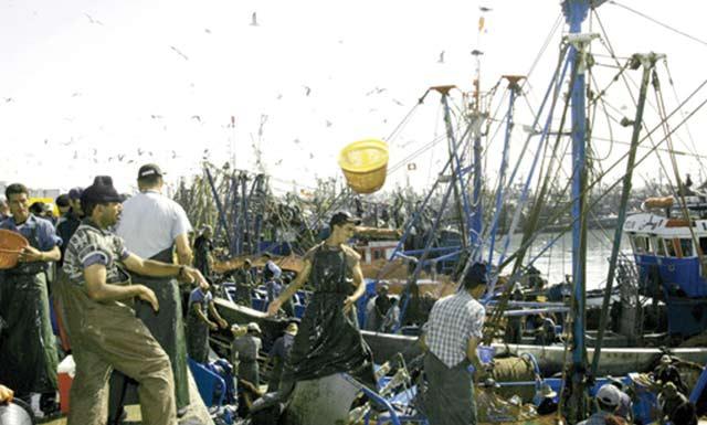 Les pêcheurs espagnols espèrent un accord UE-Maroc  «avant la fin  de l année»