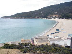 Dalia : La plage au charme sauvage