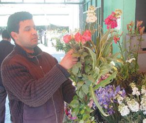 Une passion nommée plantes décoratives