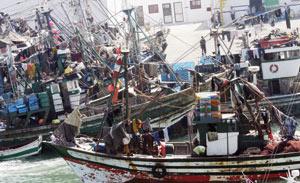Pêche maritime : La ligne de la durabilité