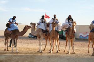 Sahara : À la découverte de la vie nomade