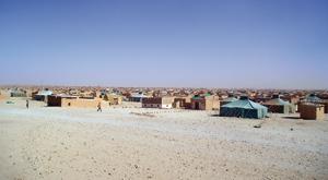 Sahara : L'ESISC alerte sur le dérapage terroriste du Polisario