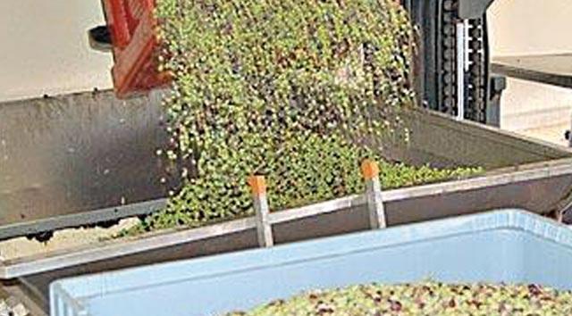 Une évolution en dents de scie pour l agroalimentaire