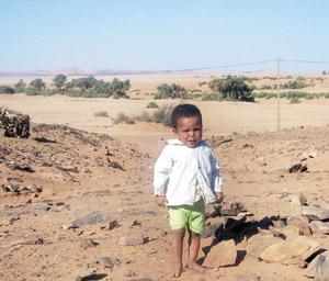 Sidi Ali : un patelin où pousse la misère