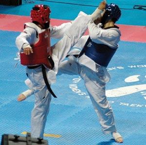 Taekwondo : Le  trio national entame la compétition