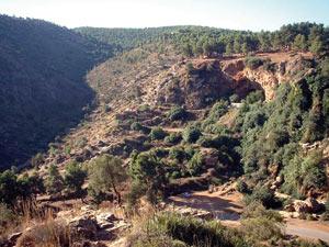Archéologie : Les hommes préhistoriques d'Afrique du Nord chérissaient les nouveau-nés
