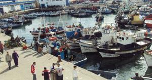 Au coeur du port de pêche de Tanger
