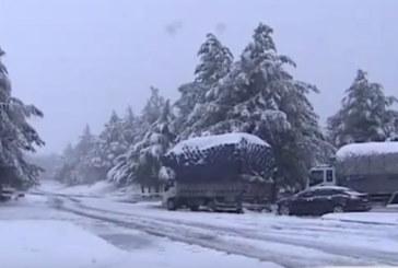 Tempête de neige: Quelles sont les routes coupées?