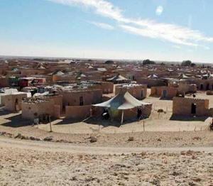 Après avoir rallié la mère patrie : Appel d'une mère sahraouie pour récupérer ses enfants séquestrés à Tindouf
