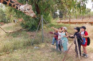 Lancement des travaux de construction du nouveau zoo