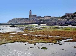 Des archéologues à Essaouira