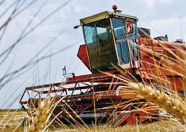 Le prix de référence pour le blé tendre  rendu moulin fixé à 280 dh le quintal