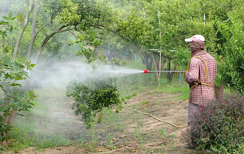 Agriculture : les stocks de pesticides obsolètes doivent être déclarés avant fin 2015