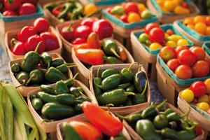 Accord agricole : Ce qu'il apportera réellement à l'agriculture marocaine
