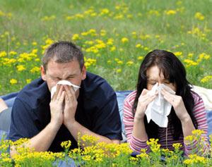Comment se soigner des allergies saisonnières