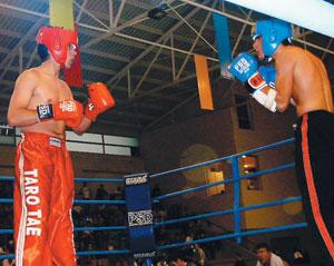 Kick-boxing : L'équipe nationale décroche sept médailles