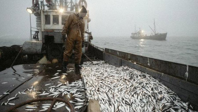 Approbation de l'accord de coopération Maroc-Russie en matière des pêches maritimes