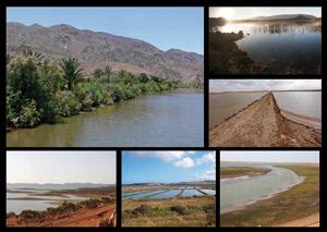 Les zones humides : des réservoirs de biodiversité par excellence