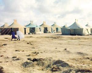 Camps de Tindouf : nouveau soulèvement