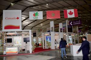 Le Canada revoit ses relations agricoles avec le Maroc