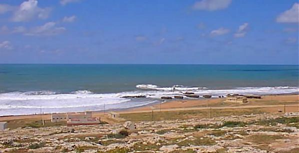 Safi : Interdiction de la commercialisation des coquillages bivalves de Cap Beddouza
