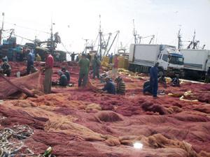 Laâyoune : Des projets pour améliorer les conditions de travail au port de la ville