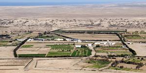 Provinces du Sud : un programme urgent pour lutter contre la sécheresse