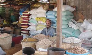 Les importations de céréales restent raisonnables