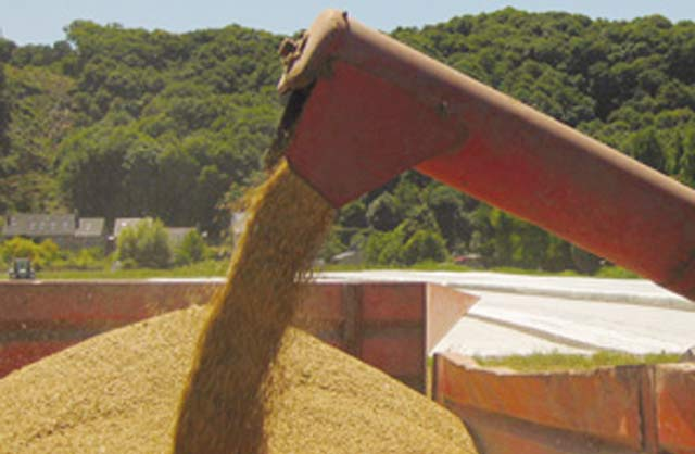 Office national interprofessionnel des céréales et des légumineuses