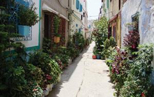 Reportage : Assilah : Des quartiers transformés en jardins partagés