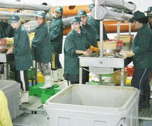 Entreprises : farine et huile de poisson certifiées