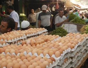 Ramadan : 18 millions d'oeufs consommés chaque jour par les Marocains