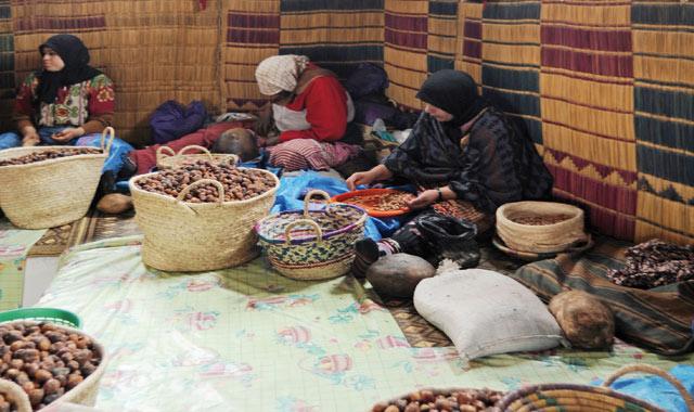 Le Maroc compte 14.000 coopératives