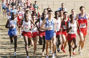 Le Maroc engagé dans trois épreuves