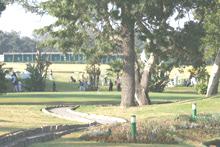 Golf : Dar Es Salam vainqueur