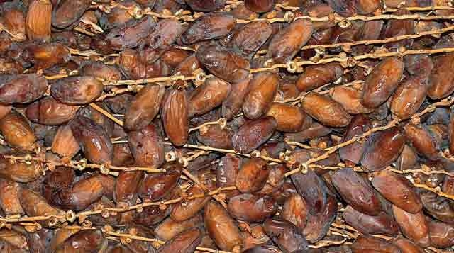 20 tonnes de dattes refoulées durant la 3ème semaine du  Ramadan