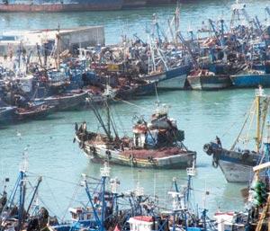 Pêche : Mobilisation contre les fraudes
