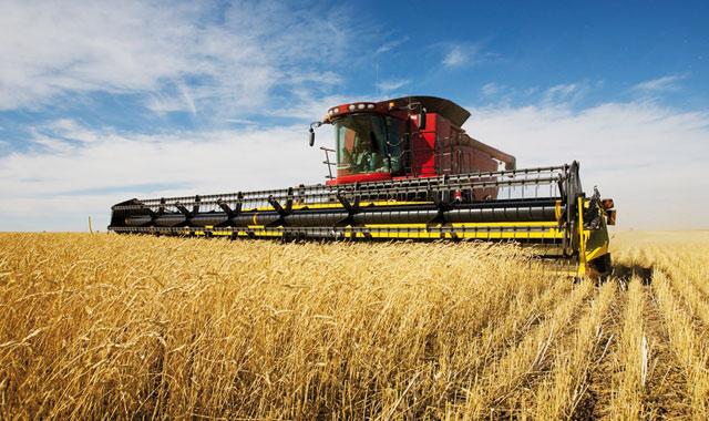 Doukkala-Abda: Le développement agricole boosté avec 200 millions de dirhams