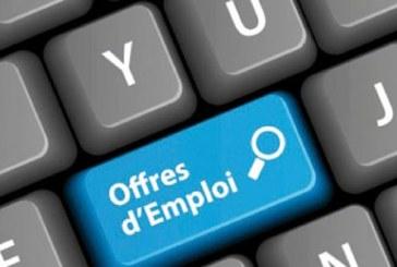 Les TIC sortent la tête de l eau : Une croissance de 29% d emploi chez les entreprises Internet en 2011