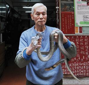 À Hong Kong, pour prévenir la grippe, le serpent a la cote