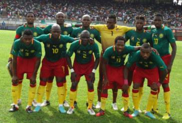 Coupe du monde 2014 : Equipe du Cameroun