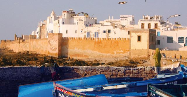 Essaouira: Arrestation d un contrebandier de racines de thuya