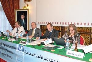 Une première dans le monde arabe et africain : Les télécommunications mobiles par satellites en conclave à Tanger