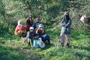 Les femmes continuent à être exclues du partage des terres collectives