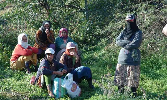 Journée du 8 mars : La FAO n oublie pas la femme rurale