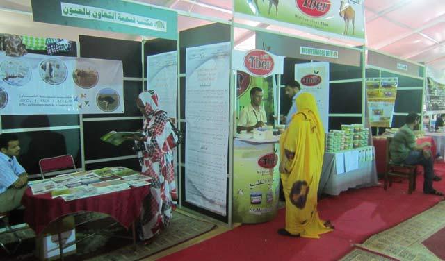 Laâyoune : Clôture de la foire régionale